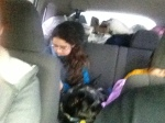 The girls were still playing together so wonderfully as we drove home!