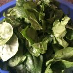 Raw spinach - lots of it! Rip it up if it is a lot of big leaves.